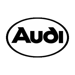 Audi3 Logo