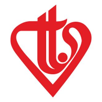 Diyanet Vakfı Logo